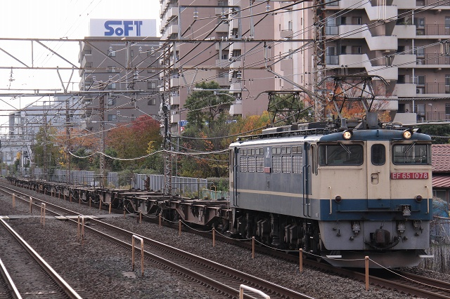 2010~11~23-IMG_5549.jpg