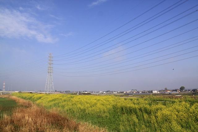 2011~04~20-IMG_5159.jpg