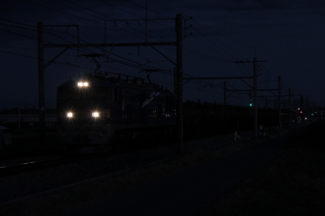2011~12~18-IMG_0736.jpg