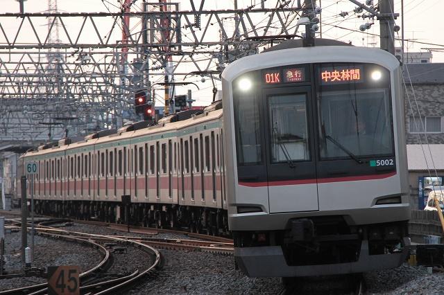 2012~02~05-IMG_3619.jpg