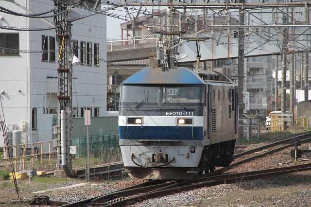 2012~03~30-IMG_7641.jpg