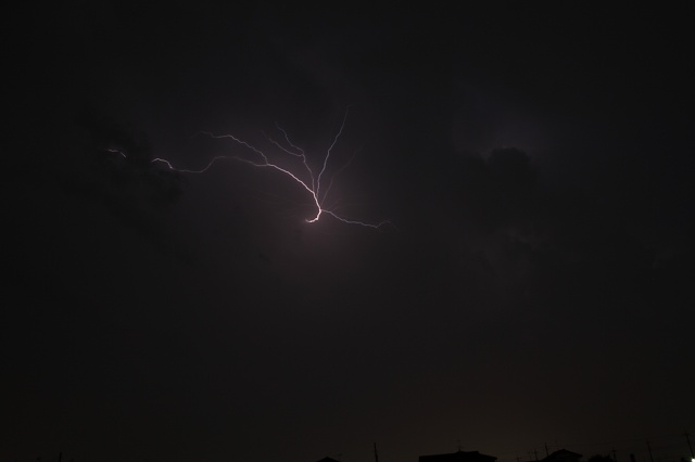 2012~07~18-IMG_5375.jpg
