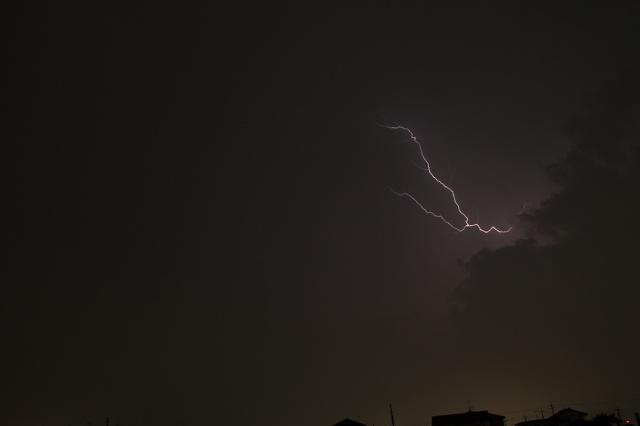 2012~07~18-IMG_5395.jpg