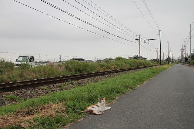 2012~08~15-IMG_7792.jpg