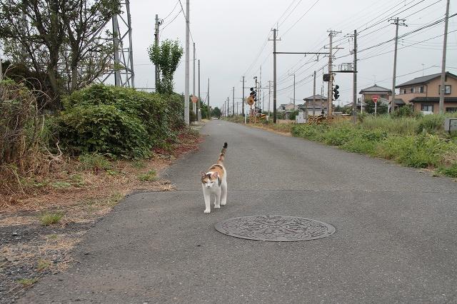 2012~08~15-IMG_7798.jpg