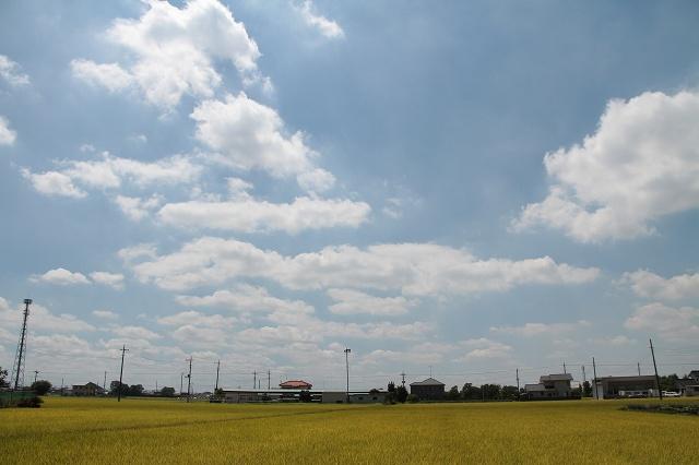 2012~08~22-IMG_8408.jpg