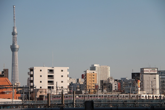 2012~11~20-IMG_4934.jpg