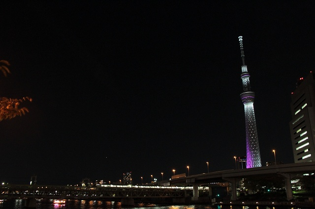 2012~11~20-IMG_5016.jpg