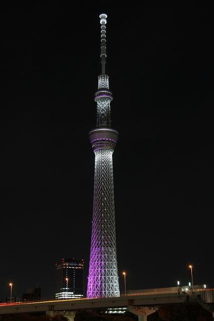 2012~11~20-IMG_5027.jpg