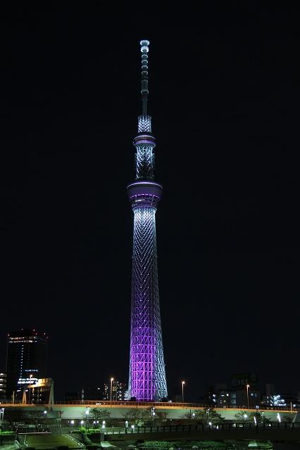 2012~11~20-IMG_5121.jpg