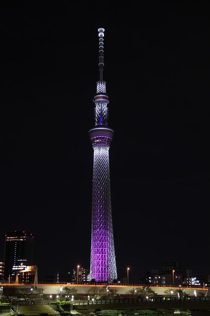 2012~11~20-IMG_5122.jpg