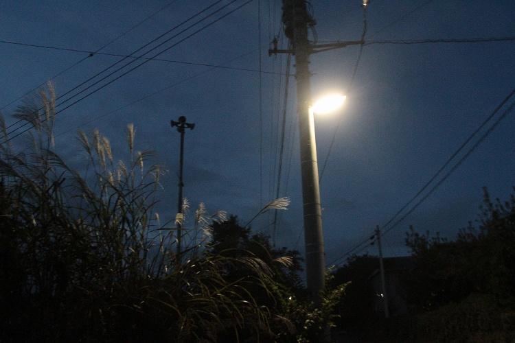 2013~10~07-IMG_3656.jpg
