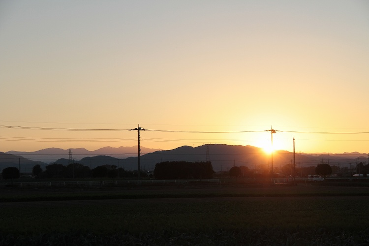 2013~11~19-IMG_7506.jpg