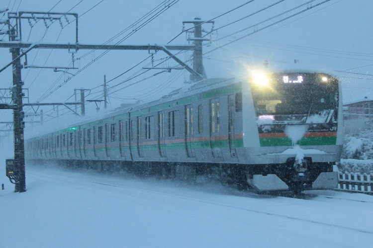 2014~02~08-IMG_2686.jpg