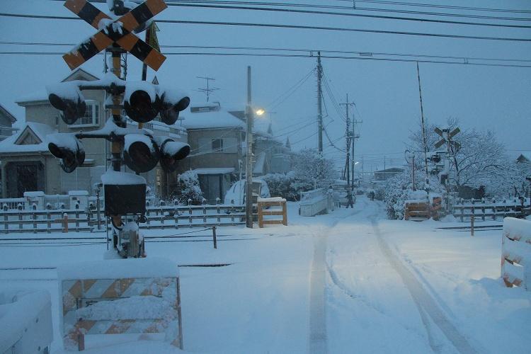 2014~02~08-IMG_2698.jpg