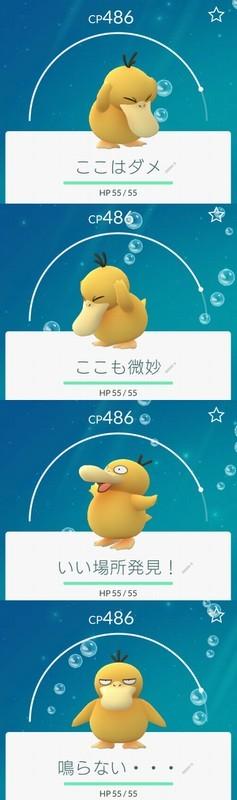20160926_215632.jpg