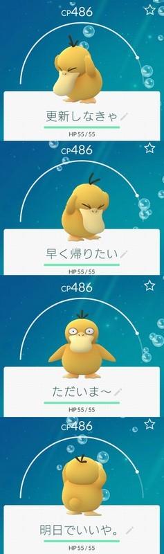 20160927_221530.jpg